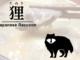 タヌキ肉アイキャッチ