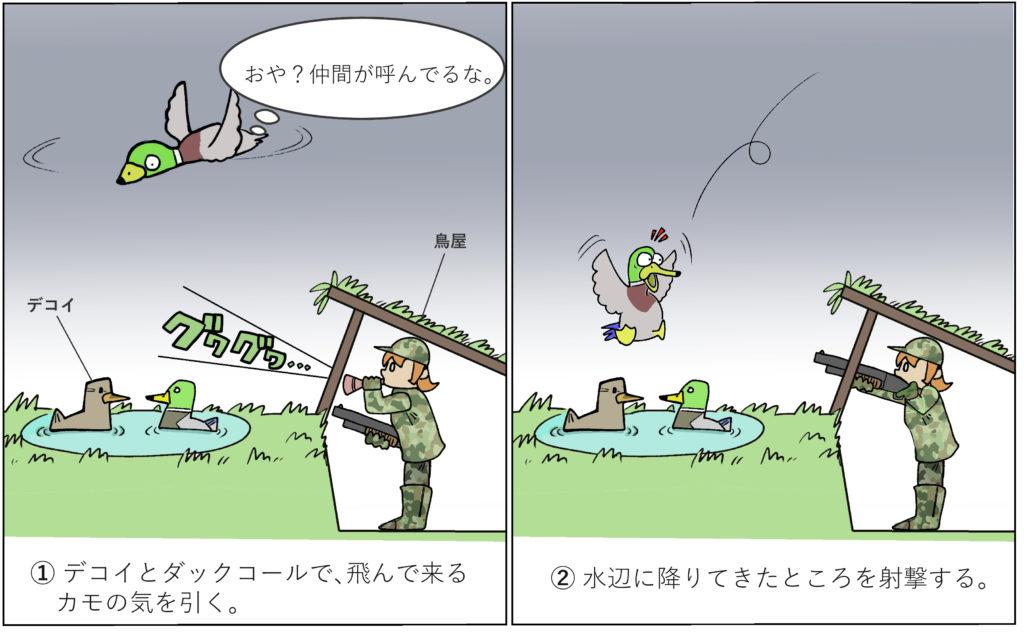 カモの鳥屋撃ち